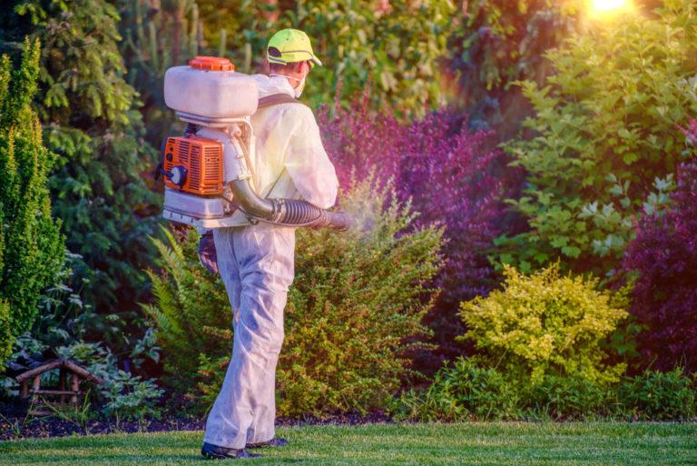 man doing pest control